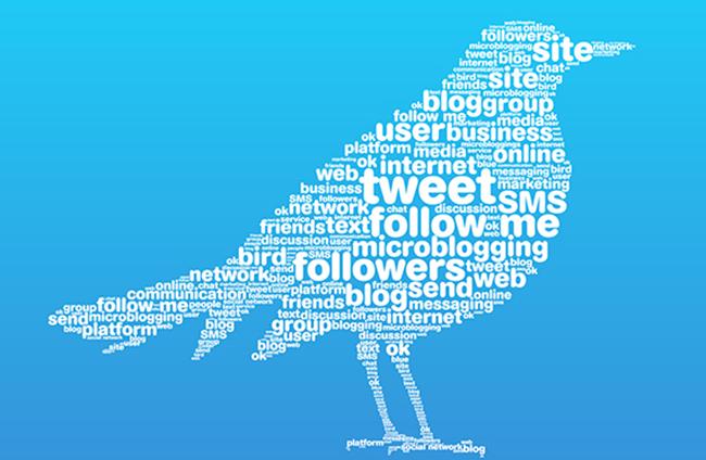 Bird words