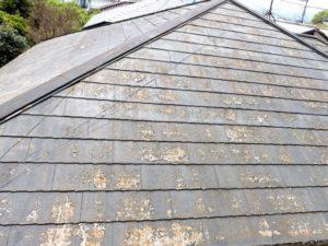 屋根の耐用年数はおよそ20~100年のイメージ